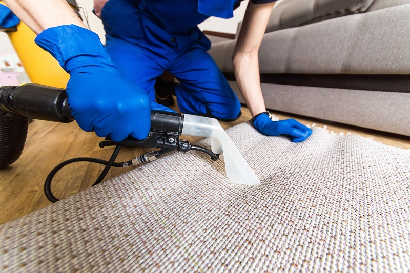 We recommend getting your carpets professionally cleaned once a year